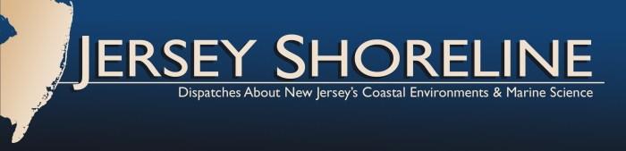 Jersey-Shoreline