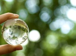 41664614 - world environmental concept. crystal globe in human hand on beautiful green bokeh. visible are the continents the americas