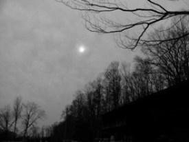 depression-darkwoods