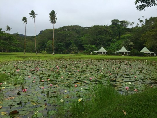 Koro Sun Resort & Rainforest Spa: Hotel Review