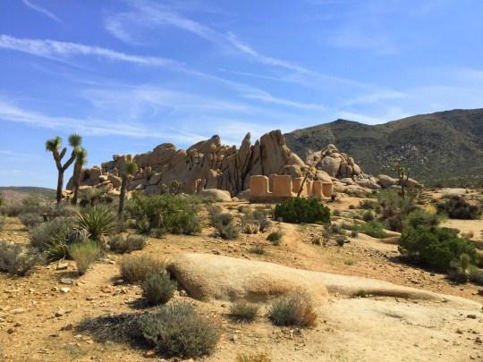 Ryan Ranch - Family Friendly Hikes at Joshua Tree