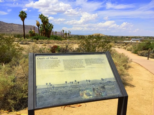 Oasis of Mara - 29 Palms