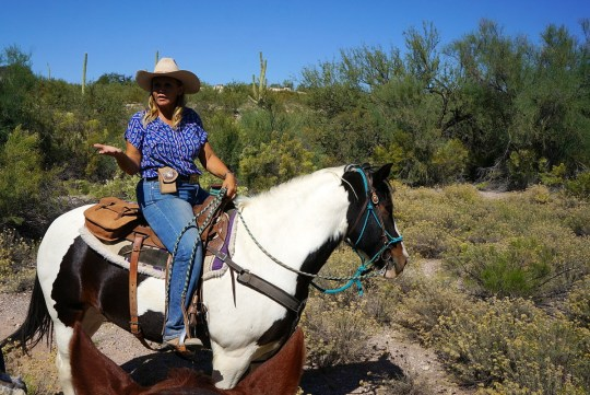 Dude Ranch, Tucson