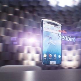 seabird_1