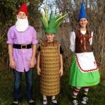 gnome, pineapple, gnome