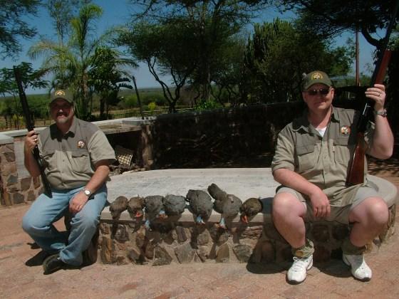 Stuart, 3 Francolin Partridge, 4 Guinea Fowl, and Noel 3-1-12