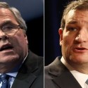 Jeb Bush - Ted Cruz