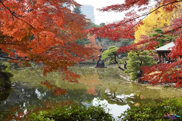 5 parques para conhecer em tóquio