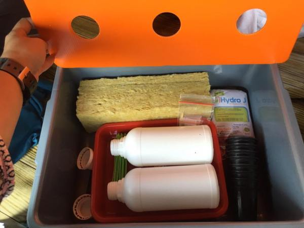 Belajar Hidroponik Starter Kit