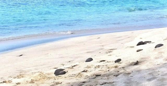 Playa Bonita - Costa Rica
