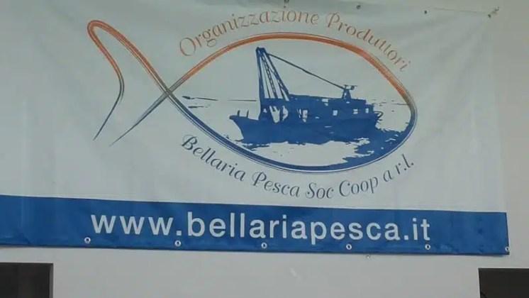 Mercato ittico Bellaria Igea Marina