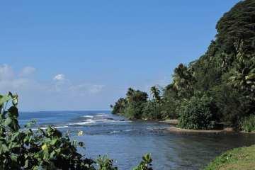 Tahiti_aafes49