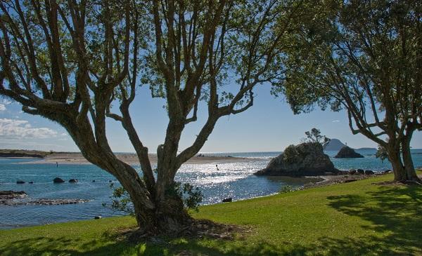 Top 10 Nouvelle Zélande