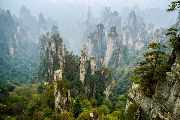 Que faire en Chine - Zhangjiajie Photo