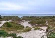 Dänemark-Event, Sandhammeren, Schönster Strand, Sachwaden, Blog, Skandinavien