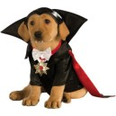 vamp dog