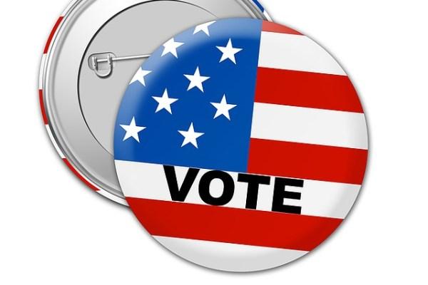 e836b30829f4043ecd0b470de7444e90fe76e6d21db4184692f1c5_640_voting