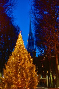Christmas Tree on Prado with Old North Spire - Dec 2012 (Photo by Matt Conti)