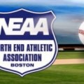 NEAA Baseball Logo