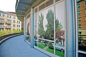 Danny Custodio, Window Installation at Fairmont Battery Wharf