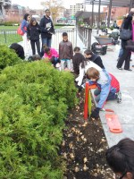 Eliot Students pitch in to plant on the Greenway (Photo by Dorothy Keville)