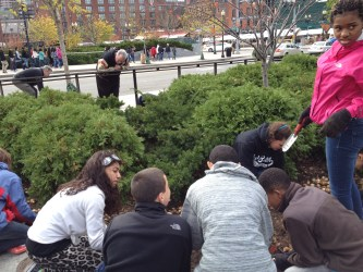 Eliiot School Students Plant Daffodil Bulbs (Photo by Diane Valle)