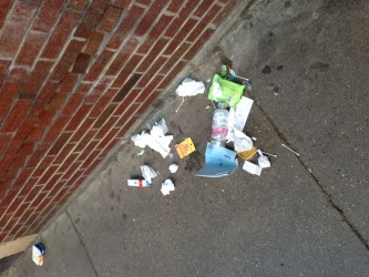 Trash on Prince Street 1 (Photo by David Marx)