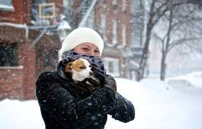 Doggies Love Snow (Photo by Matt Conti)