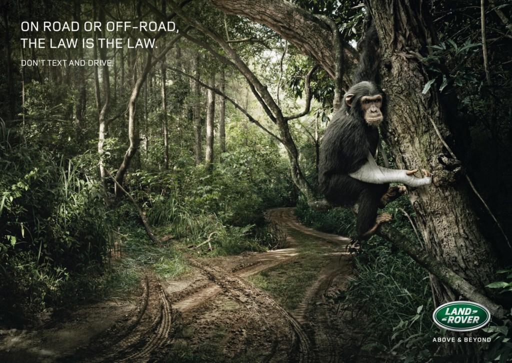 Land Rover - Monkey