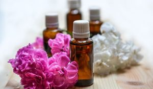 essential oils as insect repellants
