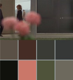 Small Of Red Color Palette