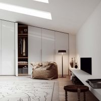 Top 40 Modern Walk-in Closets