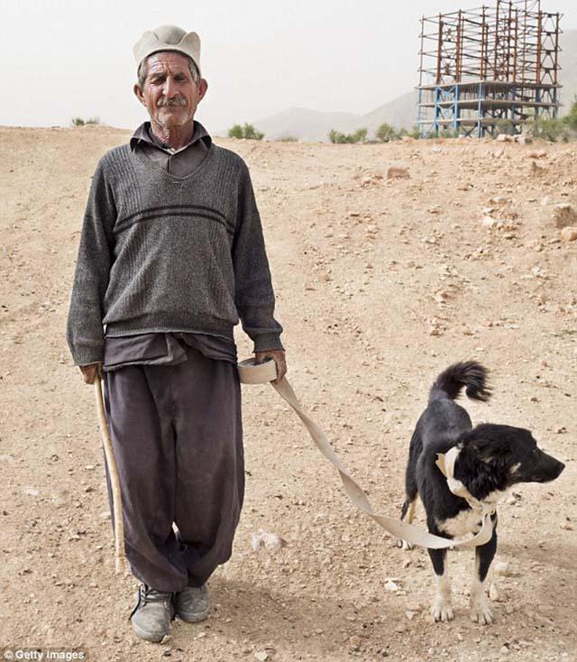 Está autorizado en Irán los perros de servicio