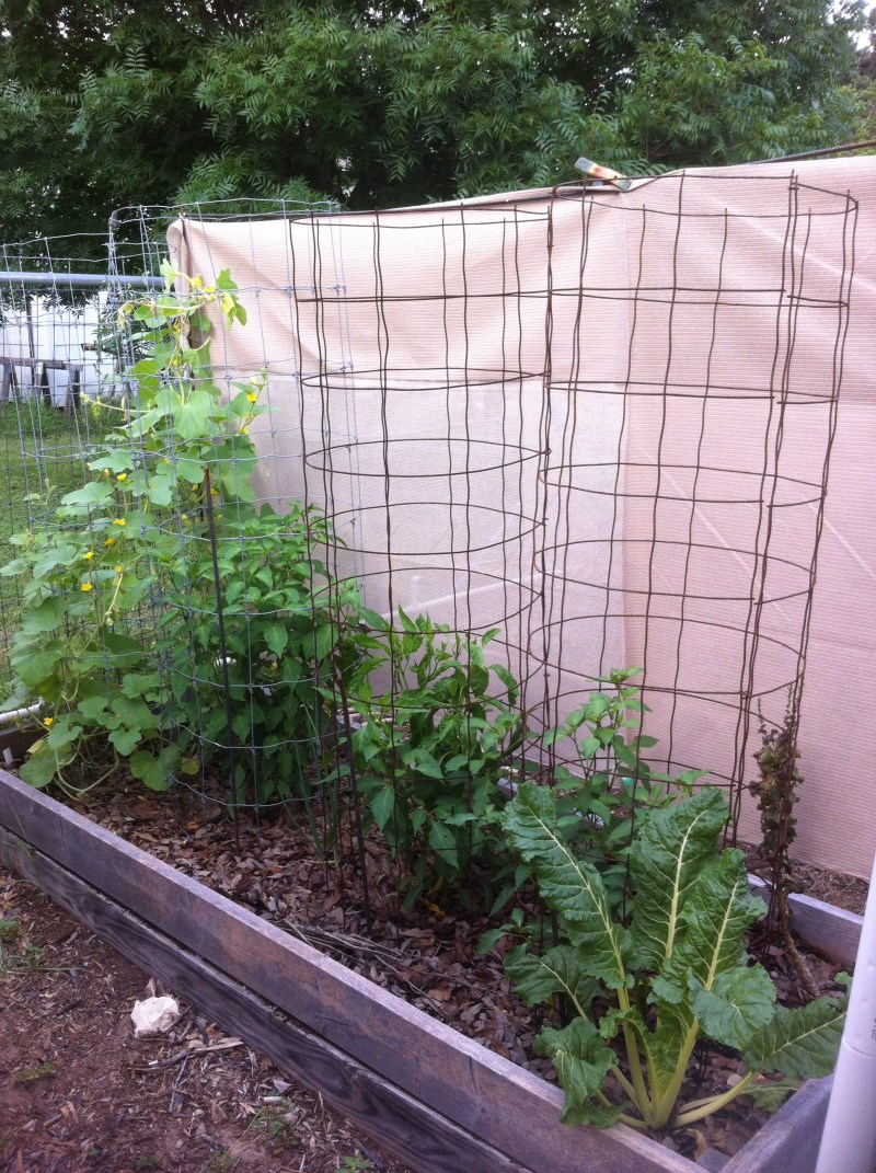 Large Of Garden Shade Cloth