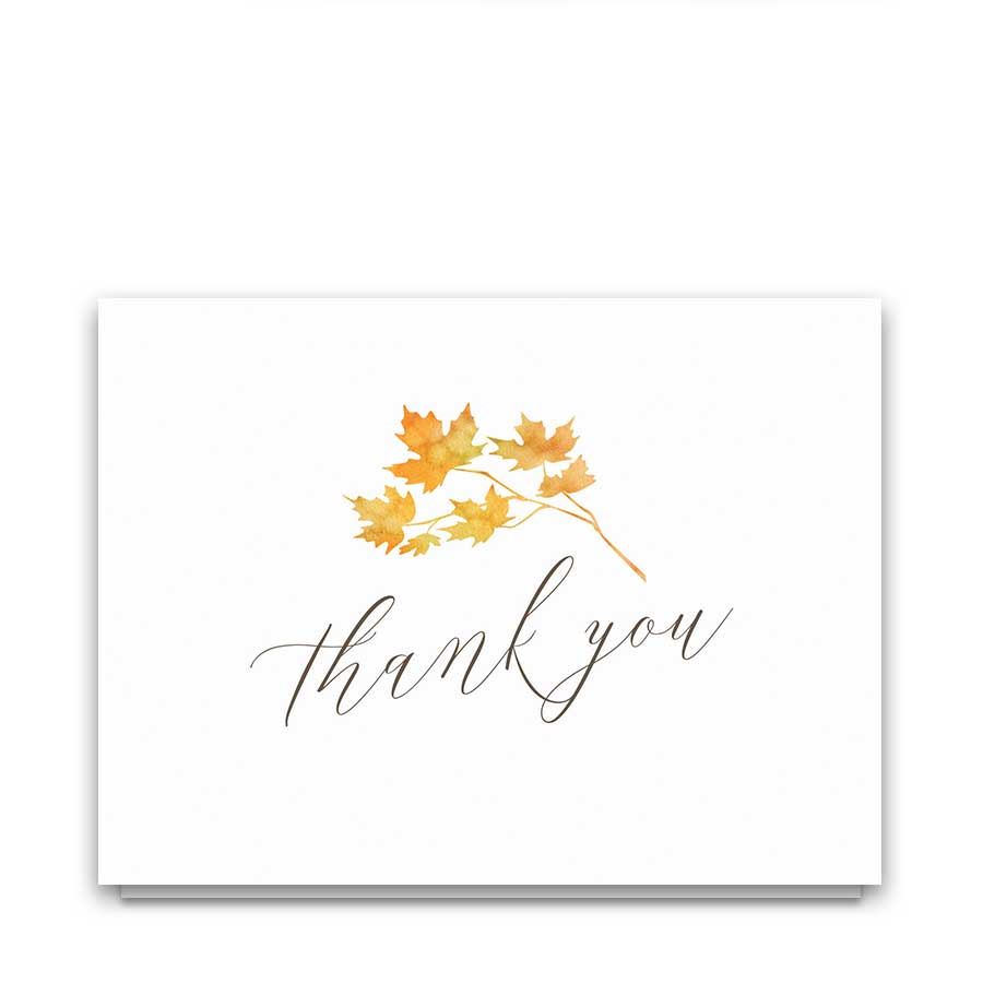 Fullsize Of Thank You Postcards
