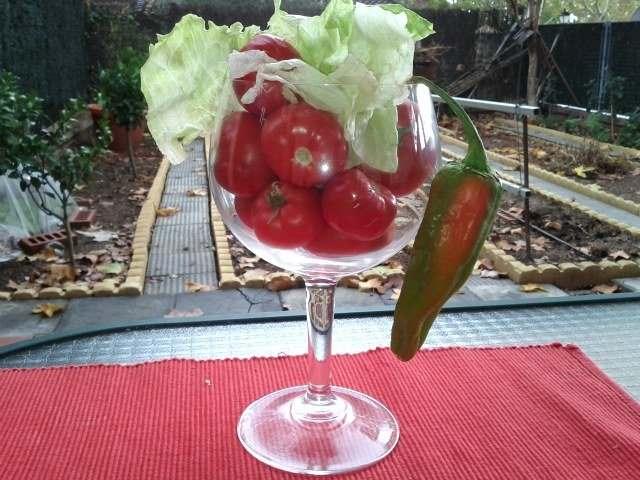 Gin-tónic ensalada