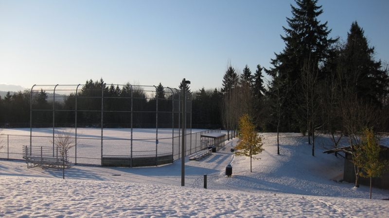 This is not a NESCAC baseball field, but it is what some fields looked like because of the weather.