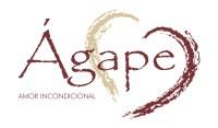 Editora Ágape, do grupo Novo Século, lança selo voltado à música gospel