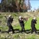 Estado Islâmico recruta, treina e paga 400 crianças na Síria para praticar terrorismo