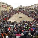 Festejos Taurinos Canaval de Ciudad Rodrigo 2017