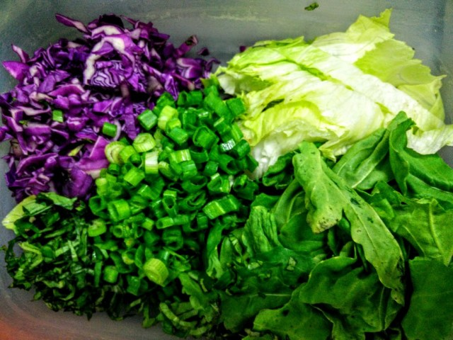 The four greens that form the base of this salad. The basil is added for flavour