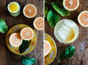 Citrus Cocktails // Not Without Salt