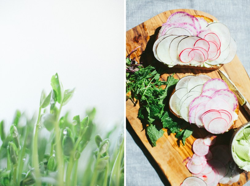 Radish Tartine with Pea Butter //NotWithoutSalt.com