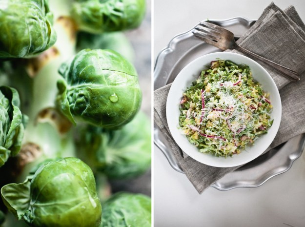 Brussels Sprout Salad with Red Onion and Pecorino - Not ...