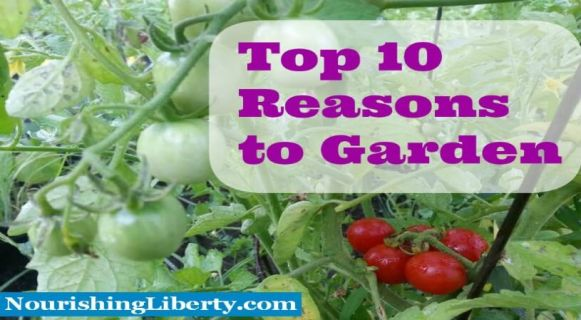 Growing a garden is fun, fun fun! Here are 10 reasons to start