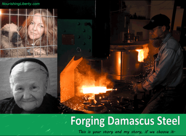Forging Damascus Steel at NourishingLiberty.com