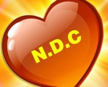 NDC Youth Convention 2015