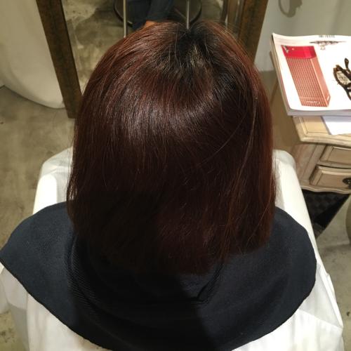 赤みが強い髪の毛1