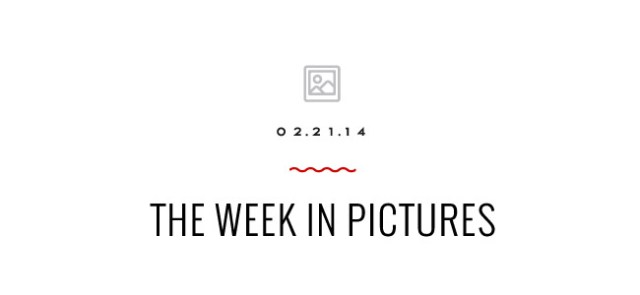 Nubby Twiglet | Week In Pictures: LA