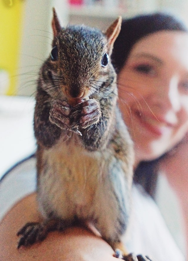 Nubby Twiglet | The Week in Pictures